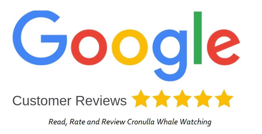 Cronulla Whale Watching reviews